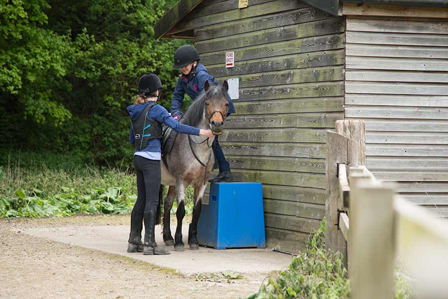 Lucy Postgate Riding School Riding Lesson image