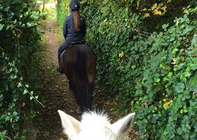 Riding School Hacking South Downs