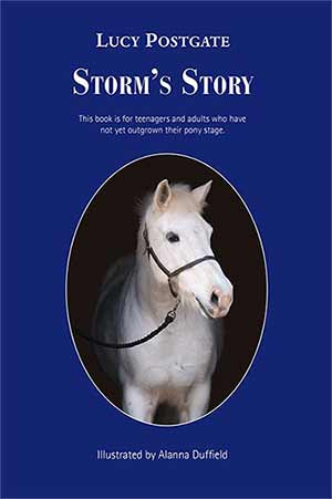 Storm's Story Book cover image
