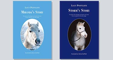Lucy Postgate Books Mirands Story Storms Story image